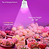 4 Pack LED Indoor Plant Grow Light Bulb A19