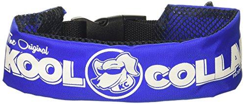 kool collar - medium in blue (includes one kool tube)