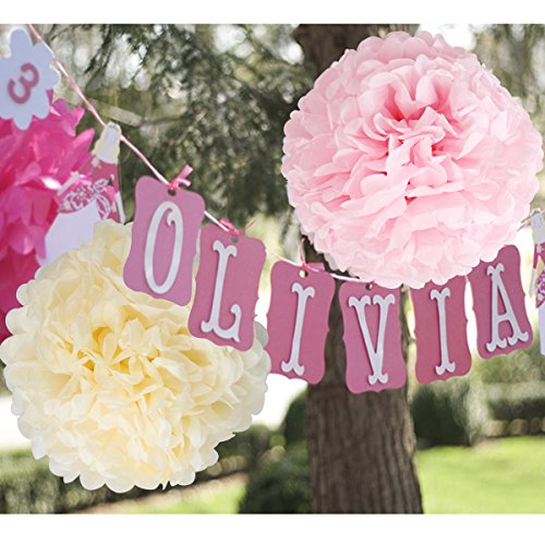 Wedding dcor paper flowers fluffy tissue paper pom poms paper flowers mightylinksfo
