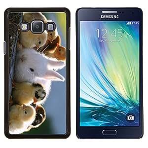 Stuss Case / Funda Carcasa protectora - Polluelos lindos y conejo - Samsung Galaxy A7 ( A7000 )