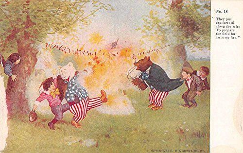 Greetings Roosevelt Bear Fire Crackers Patriotic Antique Postcard J67529