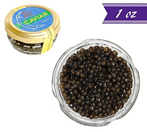 Kaluga Sturgeon Amber Caviar, Huso Dauricus, River Beluga, 1 oz / 28 gm Jar plus Mother of Pearl Caviar Spoon, Royal Gourmet Imperial Kaluga Caviar, Light-Salted, Farm Raised, OVERNIGHT SHIPPING -