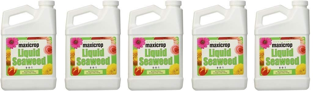 Amazon.com: Maxicrop extracto líquido de algas ...