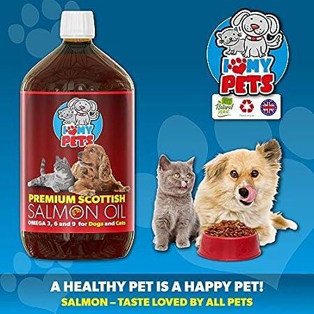 Aceite de salmón escocés I Love My Pets 500 ml para perros, gatos y otros animales – 100% aceite de salmón natural con Omega 3 y 6 – ayuda a promover una