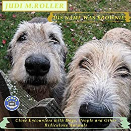A mixed-breed offspring of MARLEY AND ME and ALL CREATURES GREAT AND SMALL:  His Name Was Brownie  by Judi M. Roller