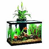 Elive Aqua duo 20 gallon LED Kit Aquarium Starter Kits