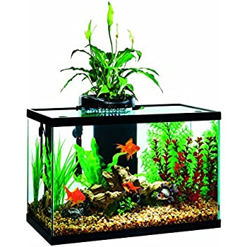 Elive Aqua Duo 20 Gallon LED Kit Aquarium Starter Kits