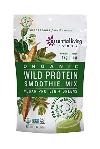 Essential Living Foods Organic Wild Protein Smoothie Mix, With Super Greens, Moringa, Spirulina, Wheatgrass, Mesquite, Lucuma, Vegan, Non-GMO, Gluten Free, Kosher, 6 Ounce Resealable Bag (6 Ounce Formula Bag)