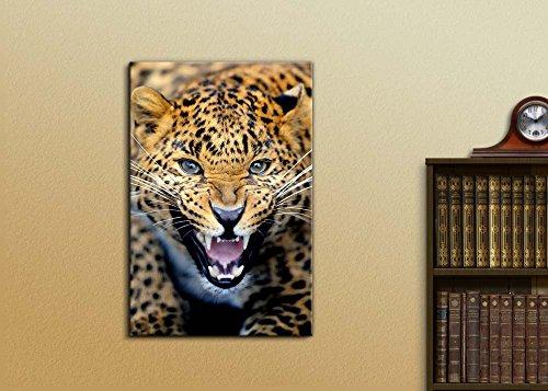 Angry Leopard Wild Animal Beast Photograph Wall Decor