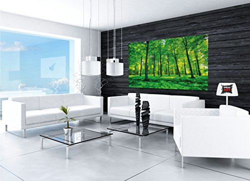 GREAT ART Wallpaper Trees Forest – Nature Wall Photo Decoration Natural Landscape Poster Summer Relax Sun Plants Flora Mural (82.7x55 Inch) by Great Art (Image #5)