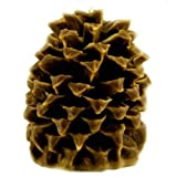 Aspen Bay Candle Cinnamon Beignet Pineapple Pinecone Review
