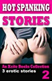 img - for Hot Spanking Stories - Volume Two - An Xcite Books collection book / textbook / text book