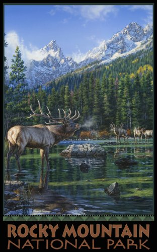 (Northwest Art Mall Rocky Mountain National Park Elk Challenge ECM Wall Art by Darrell Bush, 11-Inch by 17-Inch)