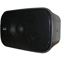 PolyPlanar Compact Box Speaker - (Pair) Black