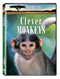 Nature:Clever Monkeys