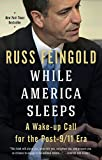 img - for While America Sleeps: A Wake-up Call for the Post-9/11 Era book / textbook / text book