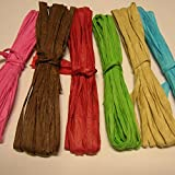Paper Raffia 6 Colors 120 Ft (36 M)