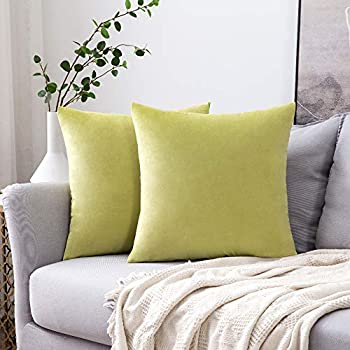 MIULEE Pack of 2 Velvet Pillow Covers Decorative Square Pillowcase Soft Solid Cushion Case for Sofa Bedroom Car 18 x 18 Inch Chartreuse Green
