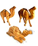 Hand Carved Olive Wood Three Camel Set - Matte Finish