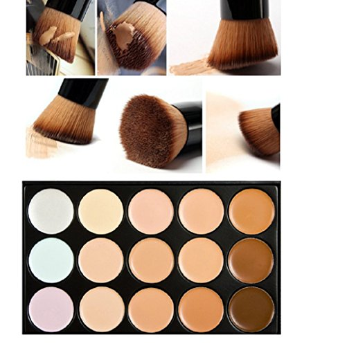 Leiothrix 15 Color Concealer Foundation Pallet Makeup Brush for Women and Girls On any Occasion