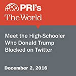 Meet the High-Schooler Who Donald Trump Blocked on Twitter | Lidia Jean Kott