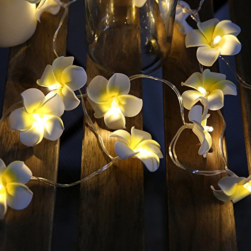 20-LED String Light Hawaiian Foam Artificial Plumeria Flower Battery Powered Fairy Starry Lights for Wedding Beach Party