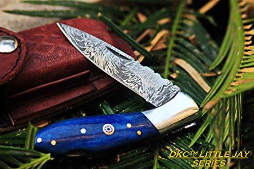 DKC Knives (16 5/18) SALE DKC-58-LJ-Blue Bone LITTLE JAY Damascus Folding Pocket Knife Buffalo Horn Handle 4
