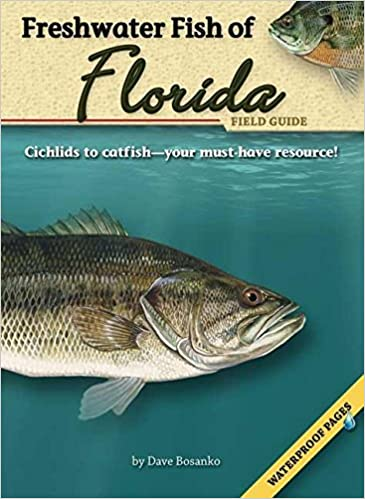 Freshwater fish of florida field guide fish identification guides freshwater fish of florida field guide fish identification guides dave bosanko 9781591932185 amazon books sciox Images