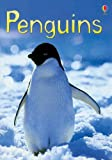 Penguins, Emily Bone and Fiona Watt, 0794525814