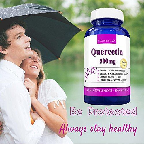 BoostCeuticals Quercetin 500 mg Histamine Intolerance Histamine Blocker Natural Antihistamine Quercitin Allergies Pills