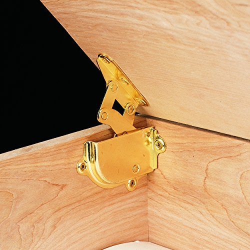 (Brass Hinge and Lid Support)