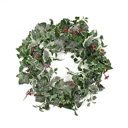 Frosted Holly (Allstate 24