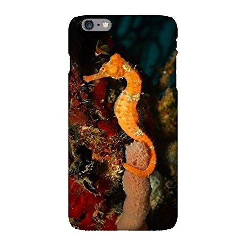 iPhone 6 Plus Slim Case Seahorse Holding Coral