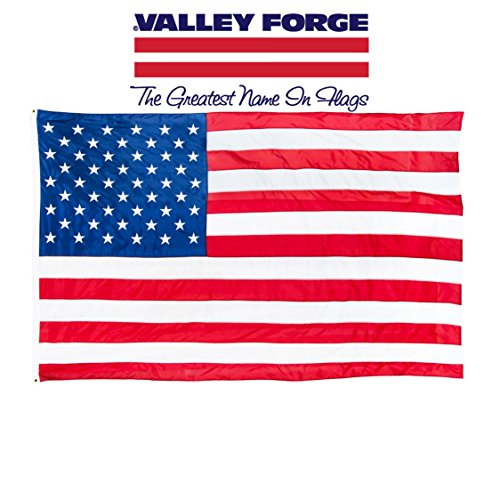 Large Flag (Valley Forge Flag 4 x 6-Foot Large Nylon US American Flag)