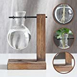 Water Planting Glass Vase,Clear Glass Vase Hanging Plant Terrarium with Retro Solid Wooden Stand for Hydroponics Plants Home Garden