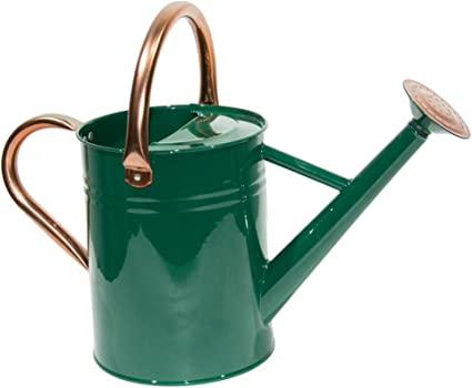 Yourjoy Steel Watering Can Sliver Galvanized Steel Watering Can With Copper Accents Removable Rosette Diffuser One Gallon Green Garden Outdoor