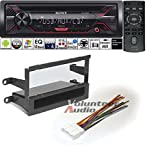 Volunteer Audio Sony CDX-G1200U Double Din Radio Install Kit with CD Player, USB/AUX Fits 2000-2002 Nissan Quest