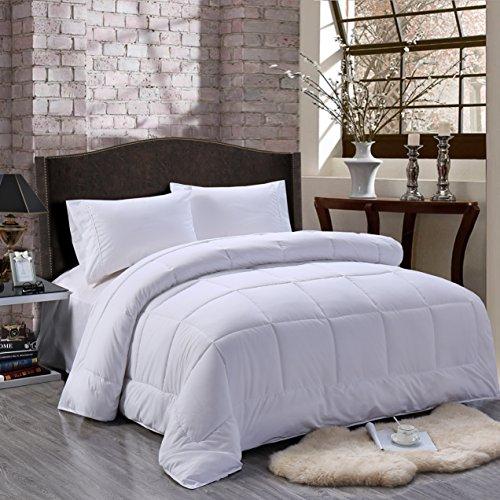Felicite Home All Season Alternative Goose Down Comforter Plush Fiberfill Duvet Insert,Queen,White
