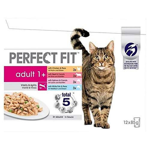 2X Cat Pouches Adult 1+ Mixed 12 x 85g