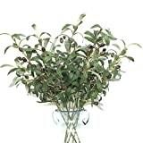 Htmeing 28″ Artificial Green Olive Branches Fake Plants Fruits for Home Office Shop Decoration (6pcs)