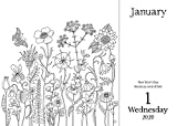 Johanna Basford 2020 Coloring Day-to-Day Calendar
