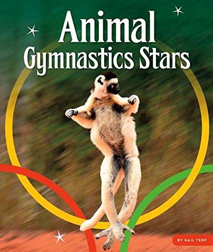 Animal Gymnastics Stars (Animal Olympics)