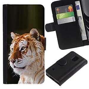 Paccase / Billetera de Cuero Caso del tirón Titular de la tarjeta Carcasa Funda para - tiger orange fur big cat Africa tropical - Samsung Galaxy S5 V SM-G900
