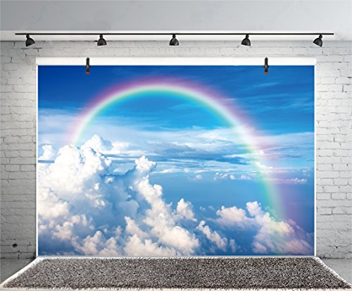 Leyiyi 8x6ft Photography Background Freedom Wedding Backdrop Rainbow Cloud Pure Sky Birthday Party Baby Shower Merry Christmas New Year Sunlight Flight Selfie Photo Portrait Vinyl Studio Video Prop