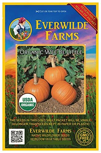 Everwilde Farms - 10 organic Wee Be Little Pumpkin Seeds - Gold Vault Packet -
