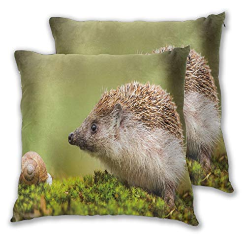 lsrIYzy Decorations Throw Pillow Cushion Cover Set of 2,Animal Photography in Eastern Europe Slug with Hedgehog Scenes from Nature Print,Square Accent Pillow Case 18x18 inches