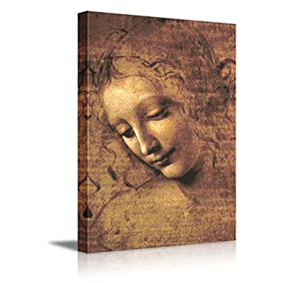 The Head of a Woman by Leonardo Da Vinci Famous Fine Art Reproduction World Famous Painting Replica on ped Print Wood Framed Wall Decor