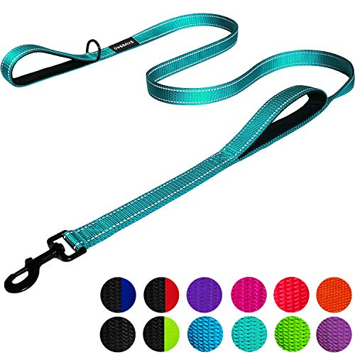 Dog Leash 6ft Long - Traffic Padded Two Handle - Heavy Duty - Double Handles Lead for Training Control - 2 Handle Leashes for Large Dogs or Medium Dogs - Reflective Pet Leash Dual Handle (Teal)