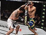 Frank Mir vs. Antonio Silva Fight Night 61