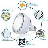 50W LED Pool Light Bulb, 5000LM 120V 6000K Daylight White LED Swimming Pool Light Bulb, Replaces up to 200-800W Traditionnal Bulb